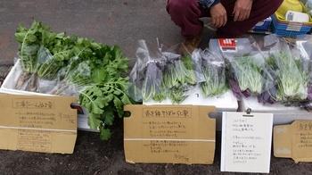 20151215_えんちゃんお野菜.jpg