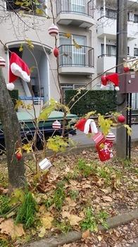 20151215_おひさまツリー.jpg