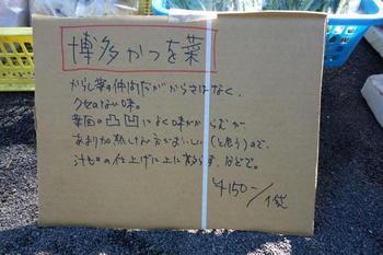 かつお菜2.jpg